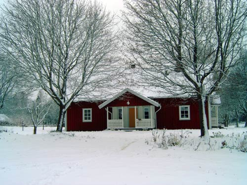 Winter in Håkannäs
