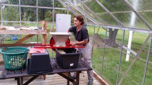 Loretta beim jährlichen Apfelsaft -Musen. hier beim Schreddern der Äpfel